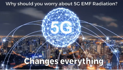microdaily emf 5g protection